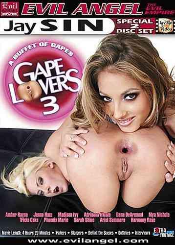 Evil Angel - Любители дырок - Часть 3 / Gape Lovers #3 (2008) DVDRip