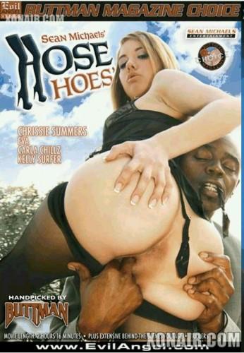 Evil Angel - Шлюшки в чулках / Hose Hoes (2010) DVDRip