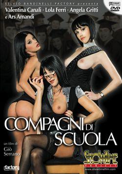Школьная Компания / Compagni Di Scuola (2010) DVDRip