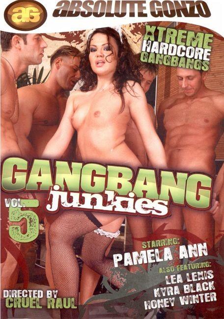 Жесткая групповуха 5 / Gangbang Junkies 5 (2010) DVDRip