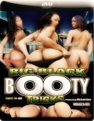 Большая чёрная жопная уловка / Big Black Booty Tricks (2011) DVDRip