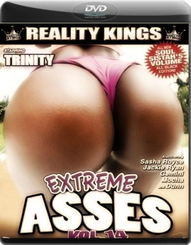 Экстремальные задницы 14 / Extreme Asses 14 (2010) DVDRip