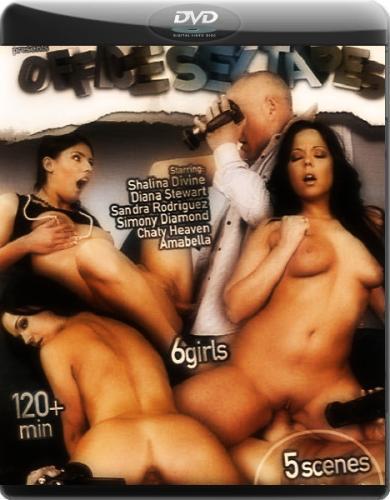 Офисные Домашние видео / Office Sex Tapes (2010) DVDRip