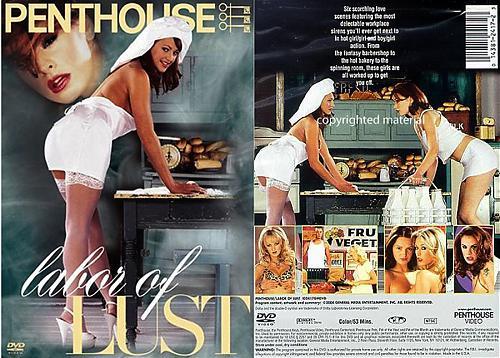 Страсть к ролевым перевоплощениям / Labor of Lust (2004) DVDRip