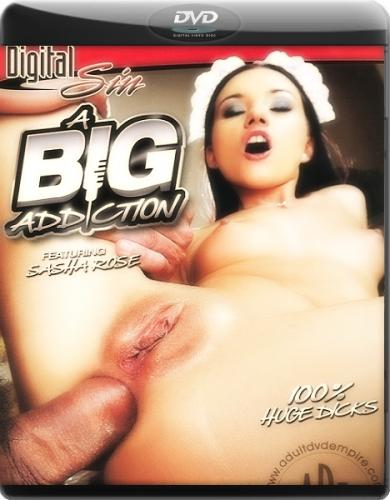 ������� ���������� / Big Addiction (2010) DVDRip