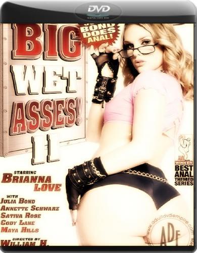 Большие мокрые задницы 11 / Big Wet Asses 11 (2007) DVDRip
